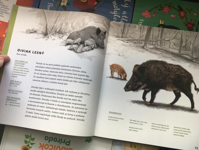 Zvieratá Slovenska, kniha recenzia, Fortuna Libri
